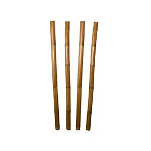 Cañas de bambú decorativas